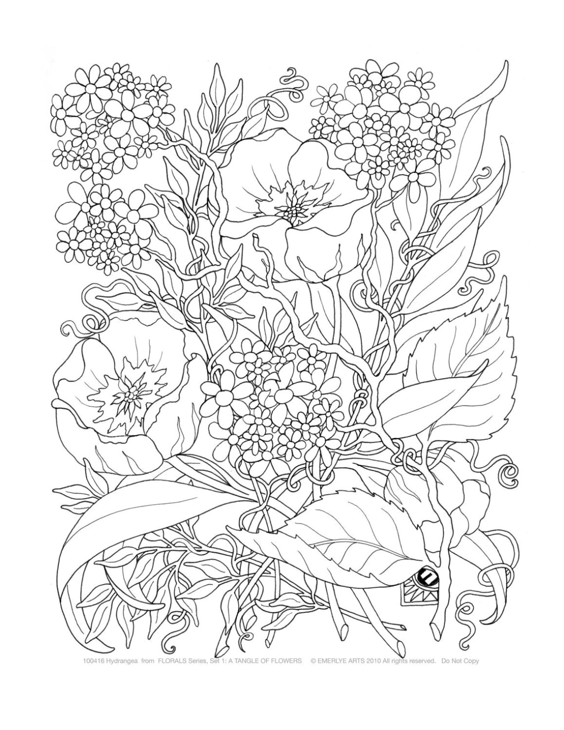 Adult Coloring A Tangle of Flowers Set of 8 by emerlyearts ... | coloring sheets for adults flowers