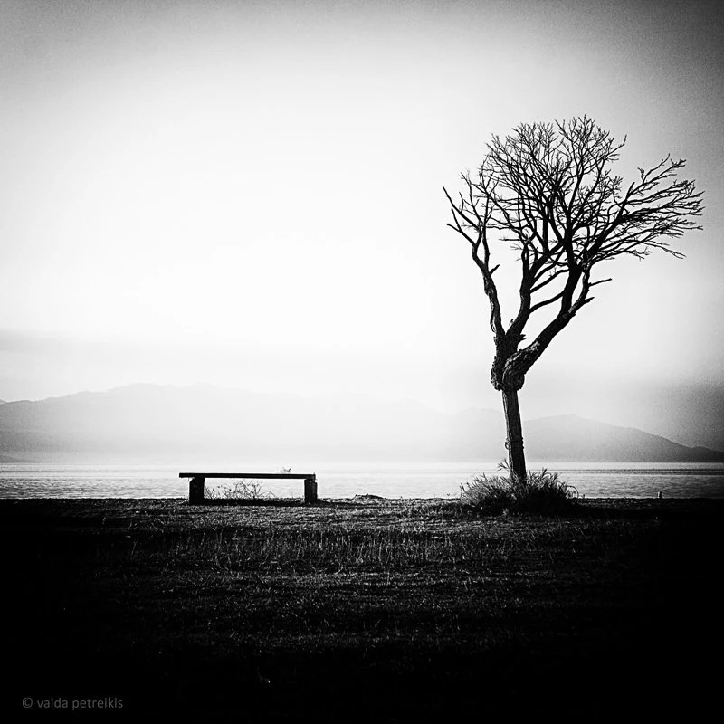 Stillness Original signed fine art photography print 6x6 inches (15x15 cm) in black and white Limited edition Landscape stillness - VaidaPhoto