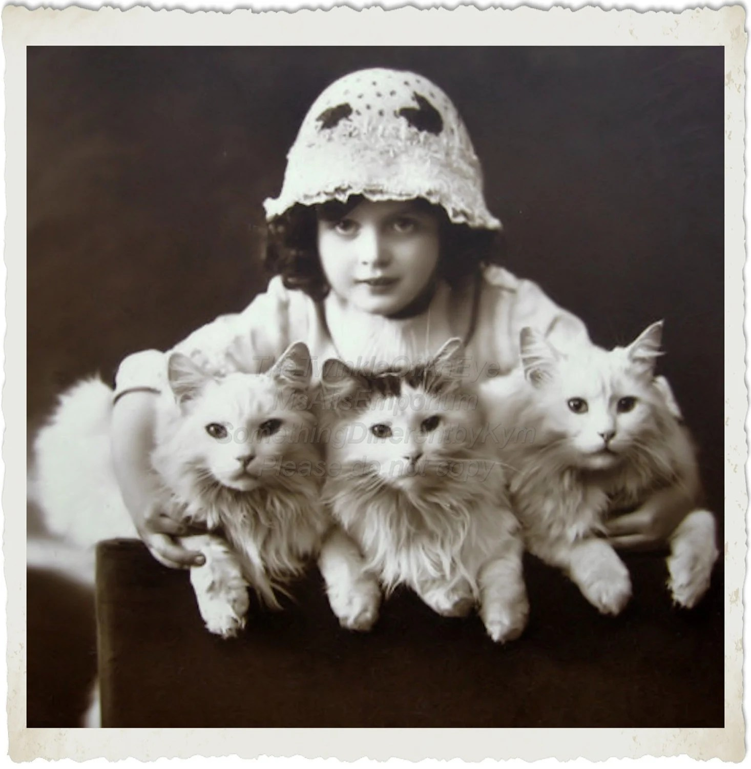Vintage Photo ,Digital Download, Cats ,Photo, for altered art and crafts