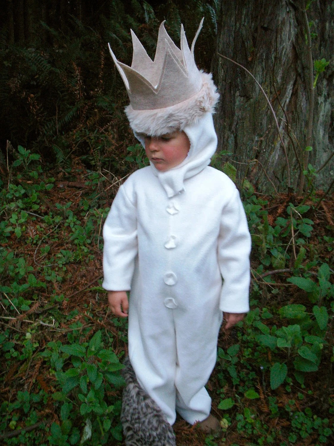 Wild Things MAX Halloween Costume for Kids, Boys, child, toddler - BooBahBlue