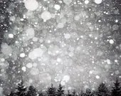 Winter Photograph, BOGO SALE, black and white, Monochromatic, landscape, woodland, snow, trees, holiday decor 8x10 fine art print - Raceytay