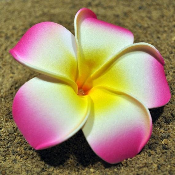 Hawaiian Foam Plumeria Flower Hair Clip 9cm 354 Inches