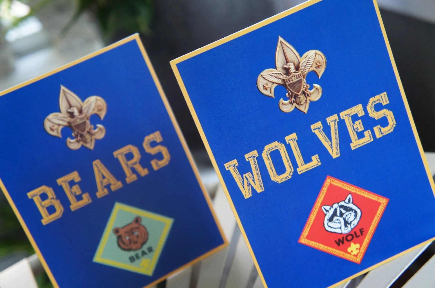 Instant Download Cub Scout Rank Signs Print Your Own