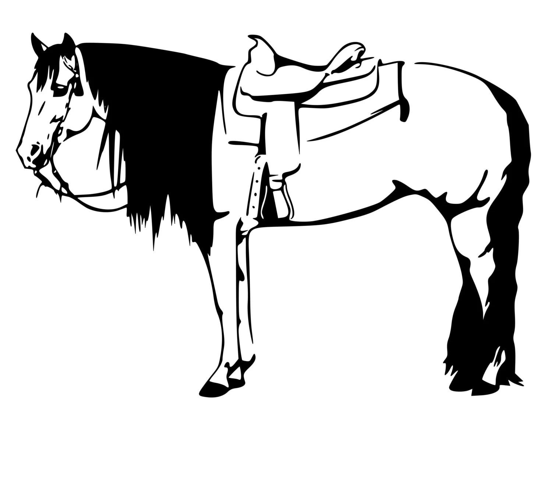 Horse Decal Western Horse Buckskin Horse Decal 27x19 Inches