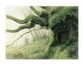 SIGNED Fine Art Print - COSY MOSS - Big