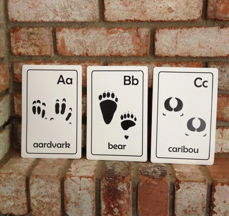 Printable Animal Tracks Abc Flash Cards
