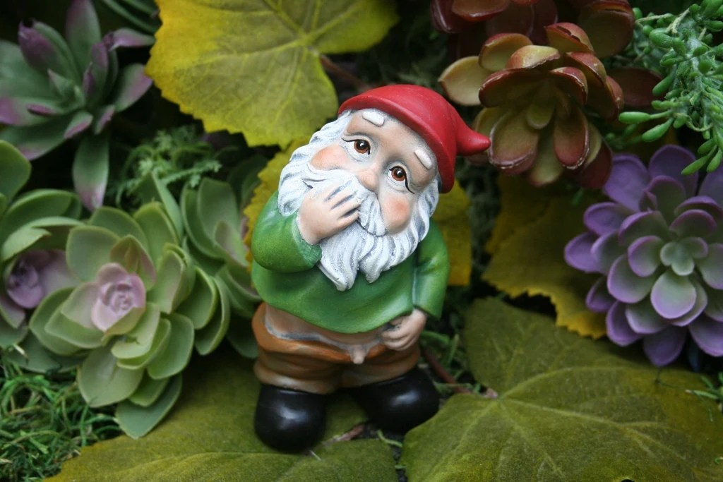 Funny Gnome Caught With His Pants Down Wee Willie