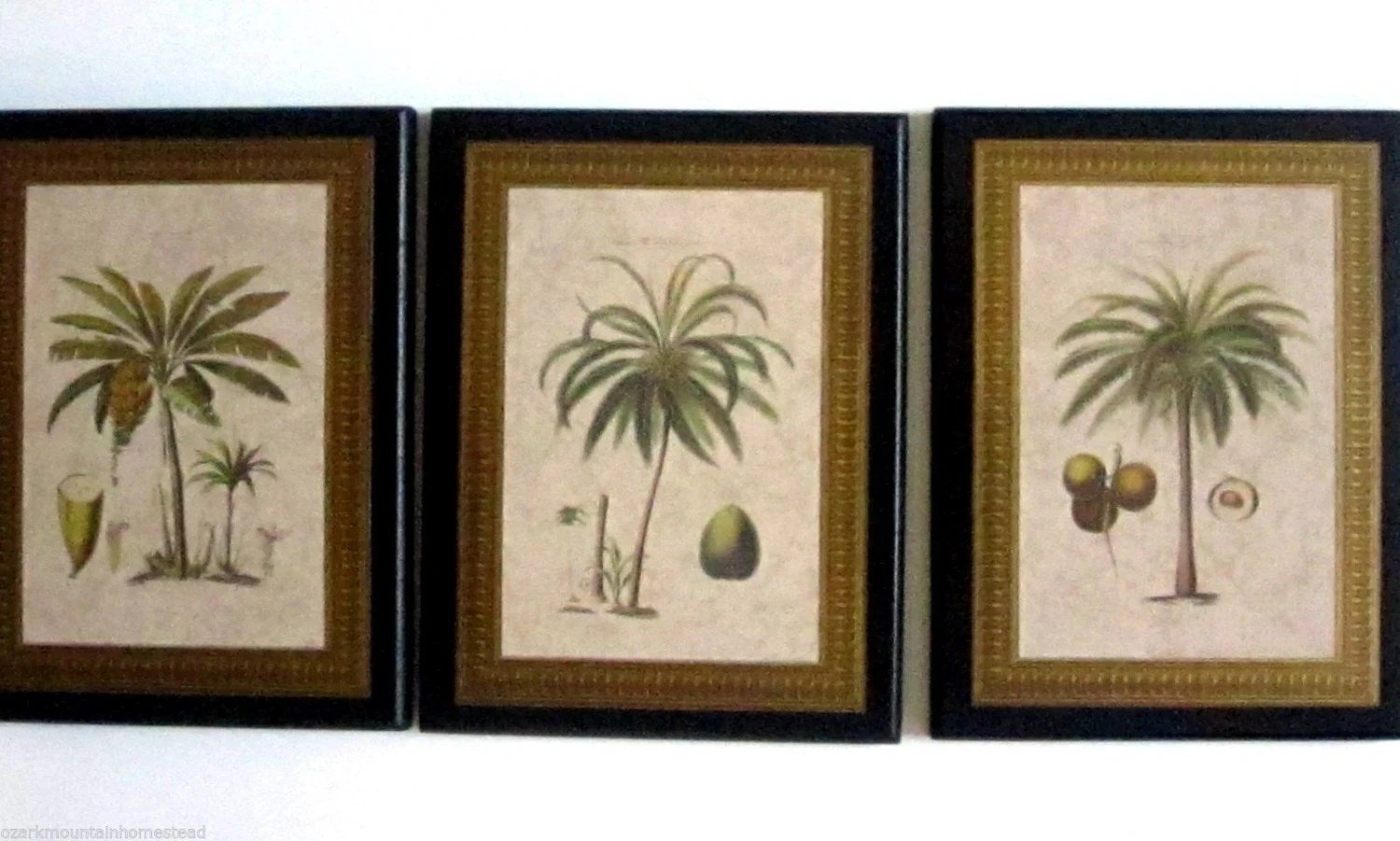 Palm Trees In Gold Frames Wall Decor Plaques Tropical Or
