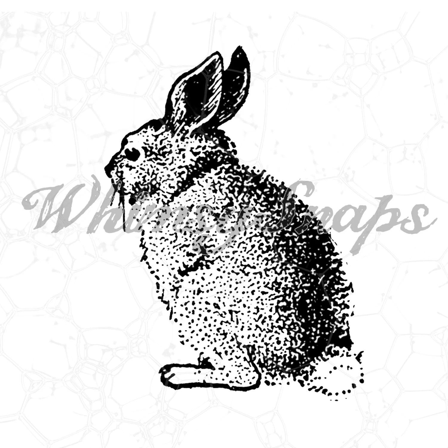 Vintage Bunny Rabbit Clip Art Digital Image By Whimsysnaps
