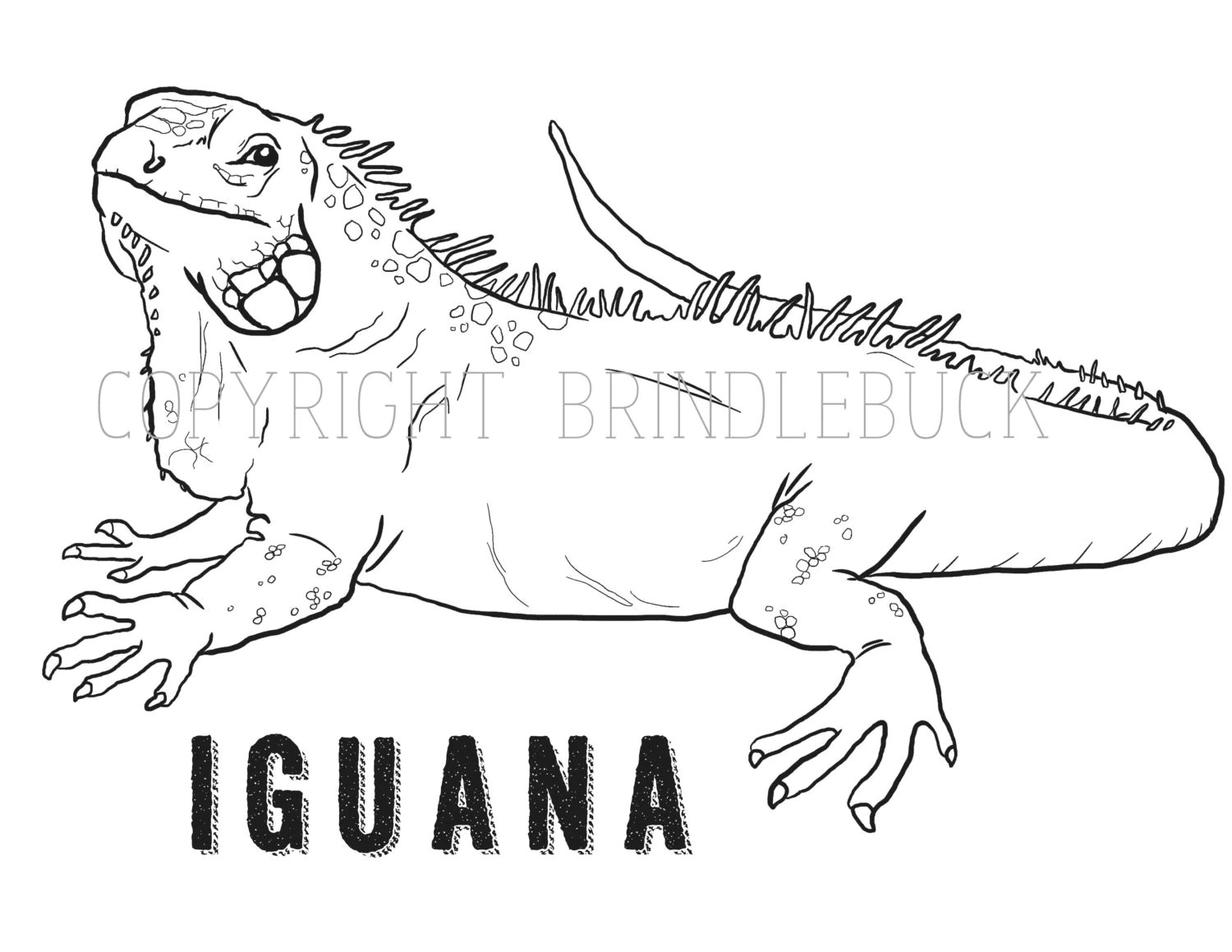 I Wanna Iguana Page Coloring Pages