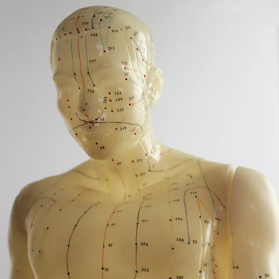 Vintage Chinese Acupuncture Male Anatomy Doll