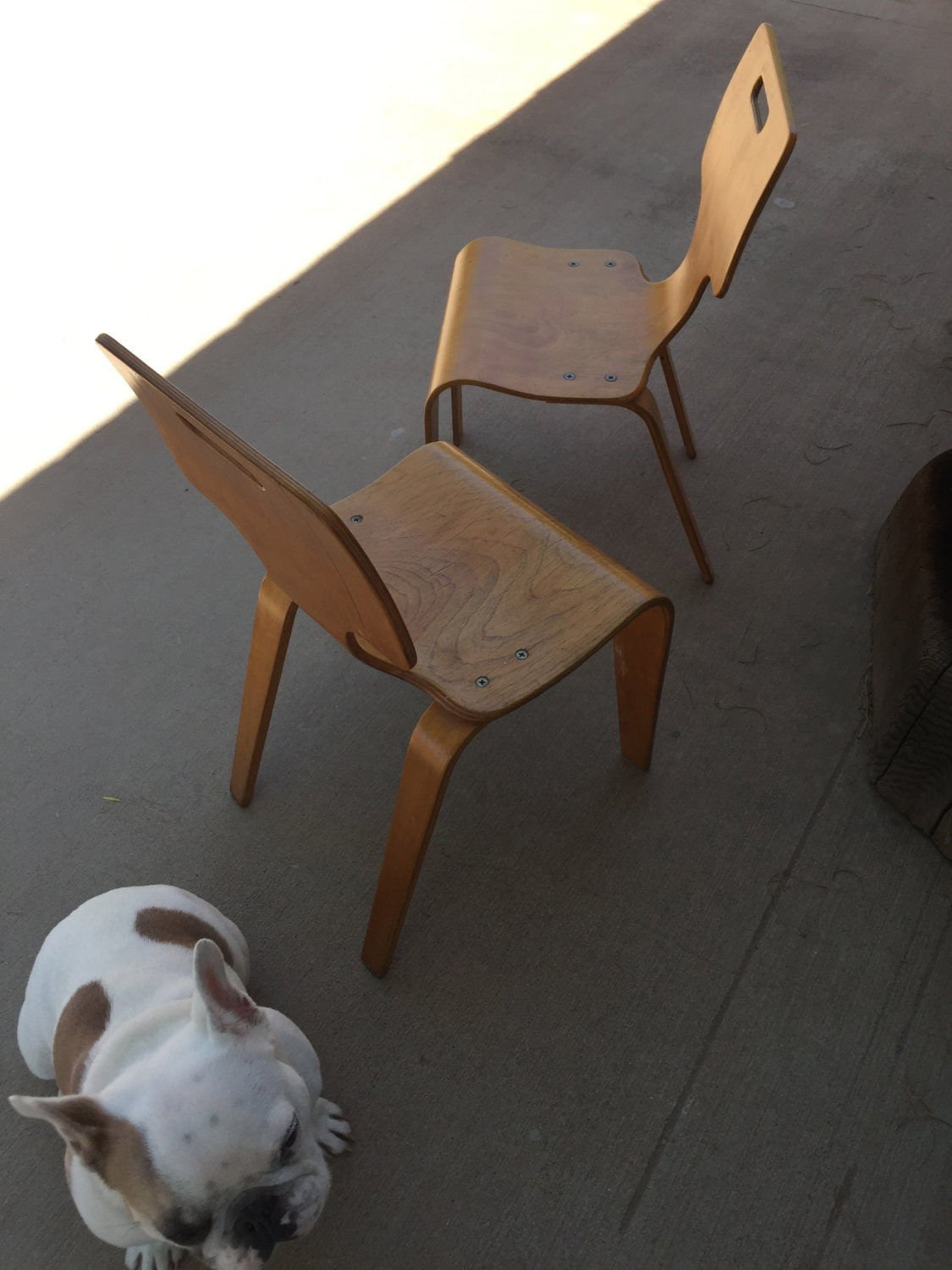 Pair of vintage mid century modern children s chairs bent plywood