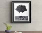 Black Tuft Tree Signed Art Print of Signature Original By Rafi Perez