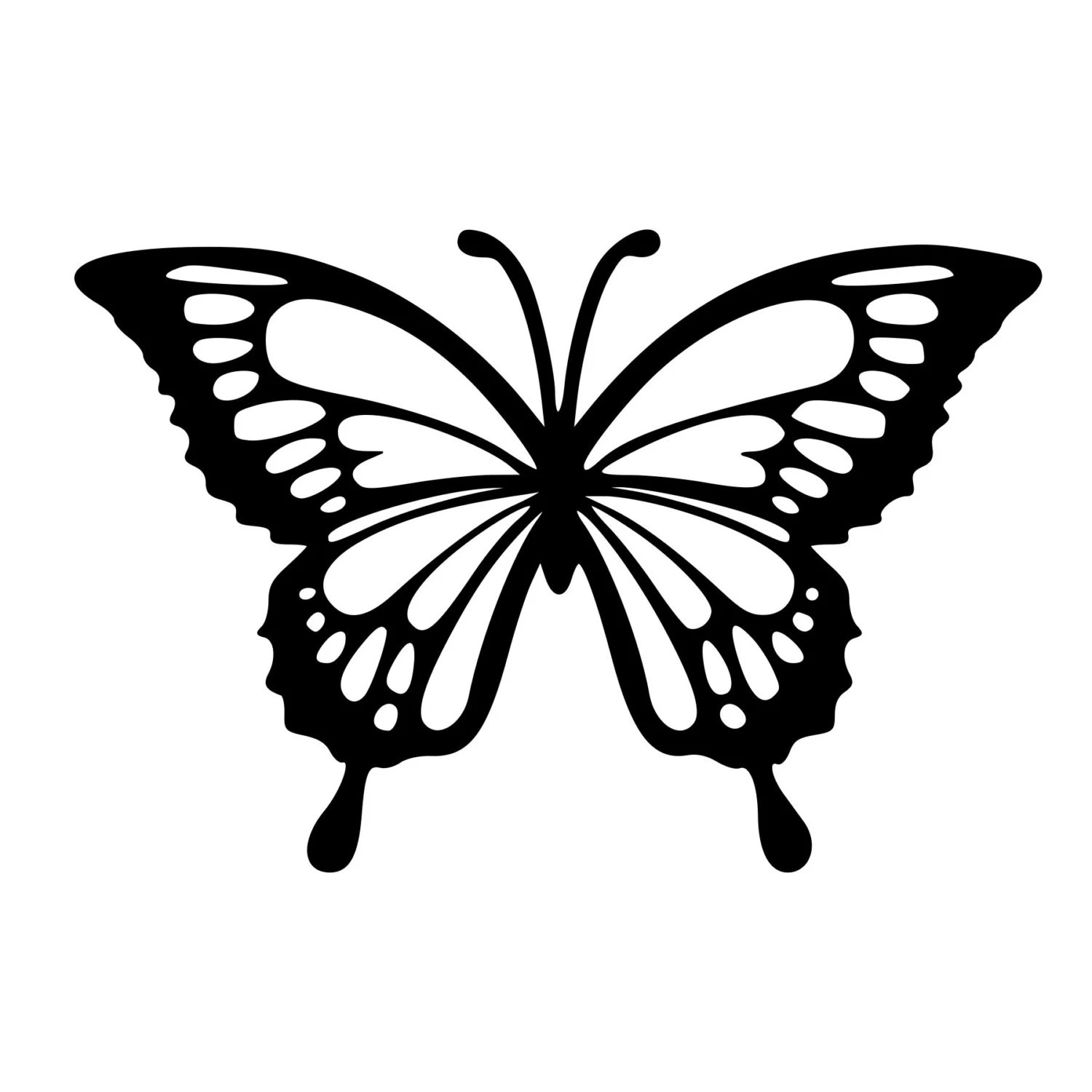 Lovely Monarch Butterfly Cut Decal Car Window Wall Bumper