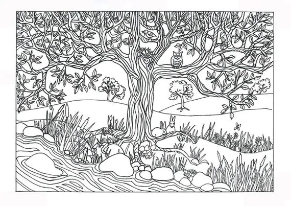 tree amp river nature scene coloring page coloring for adults on etsy