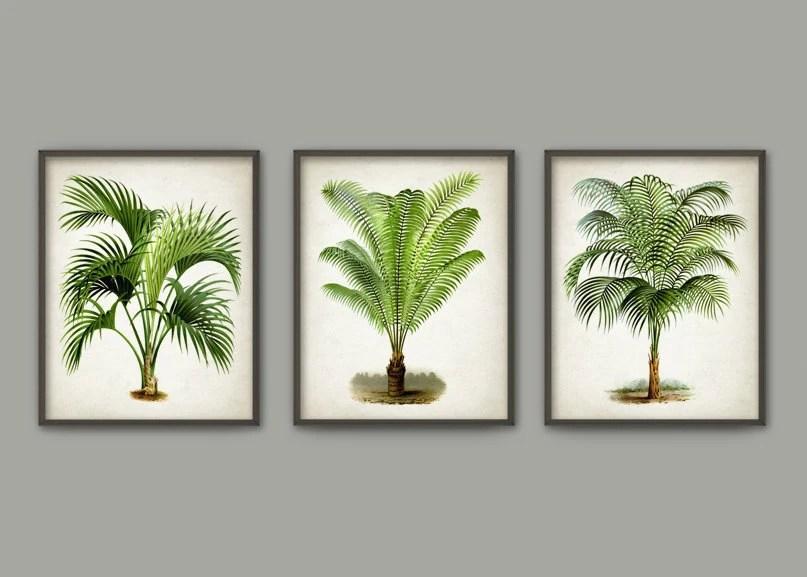 Palm Tree Botanical Wall Art Print Set Of 3 Modern Home