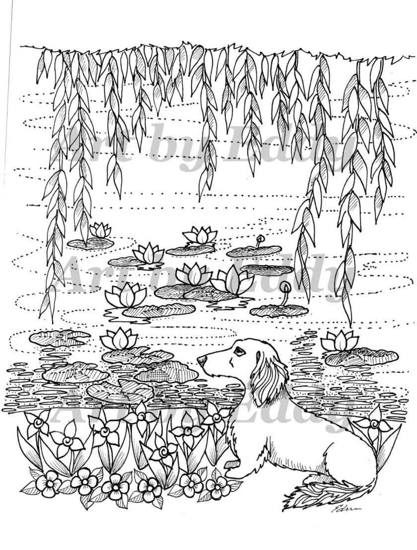 art of dachshund single coloring page water lilies