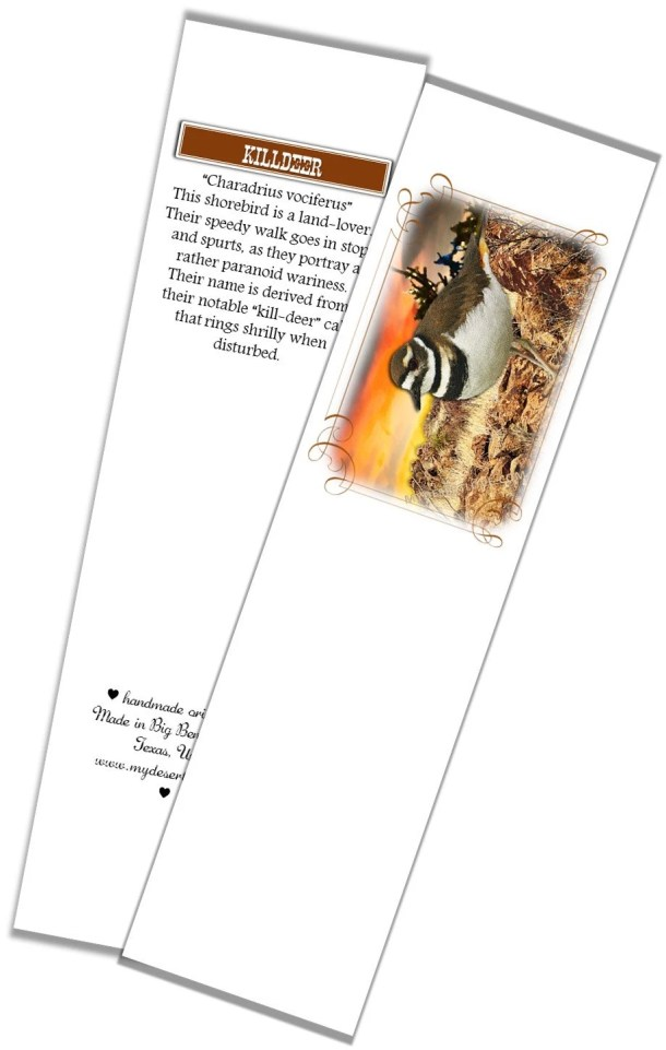 Bird Photo Bookmark, Kill...