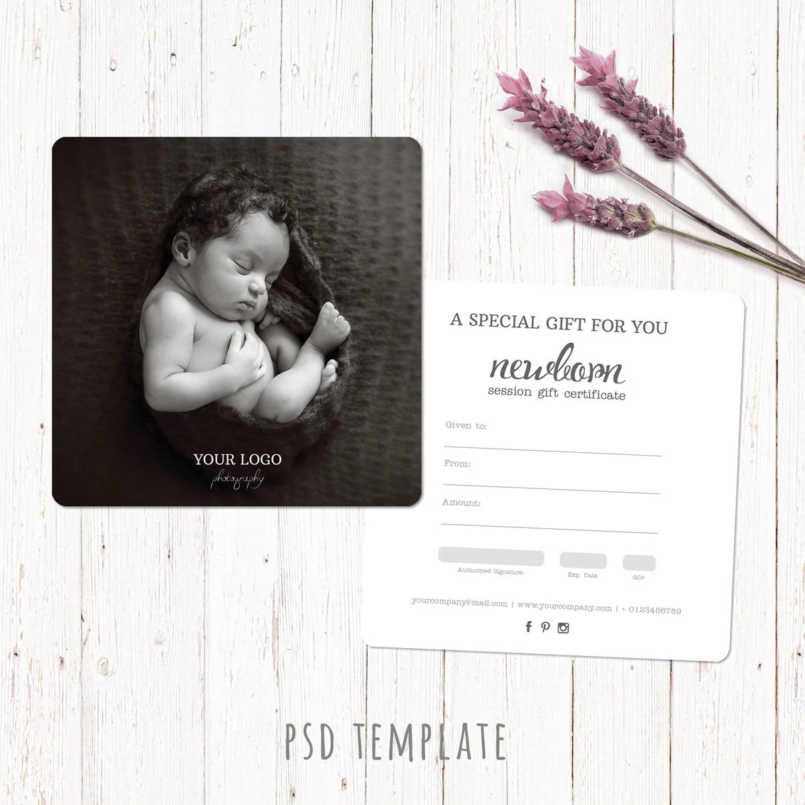Gift Certificate Template Newborn Session Photography Gift