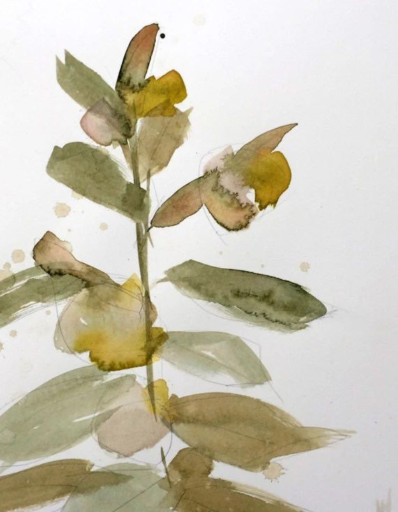 Milkweed Botanical Original Watercolor Painting by Angela Moulton 8 x 10 inch with 11 x 14 inch White Mat