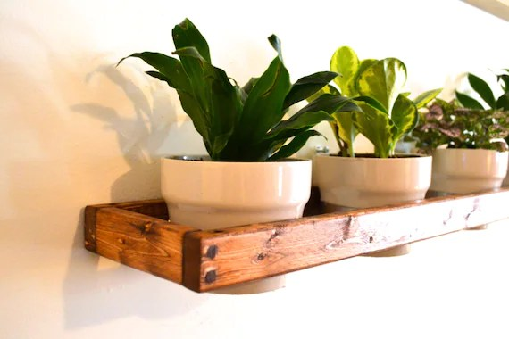 Wall Mounted Indoor Plant Pots