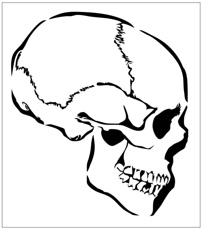 Hw19 Reusable Laser Cut Stencil Skull