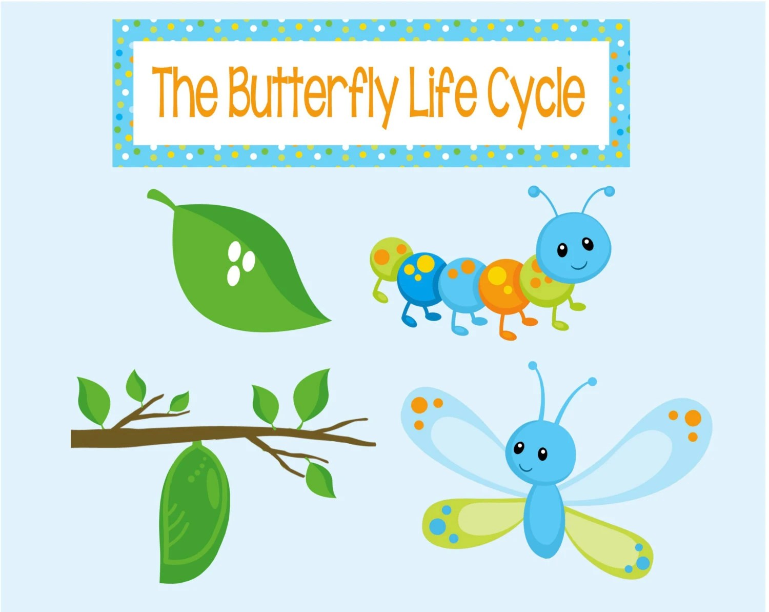 Butterfly Life Cycle Puppets Perfect For Caterpillar