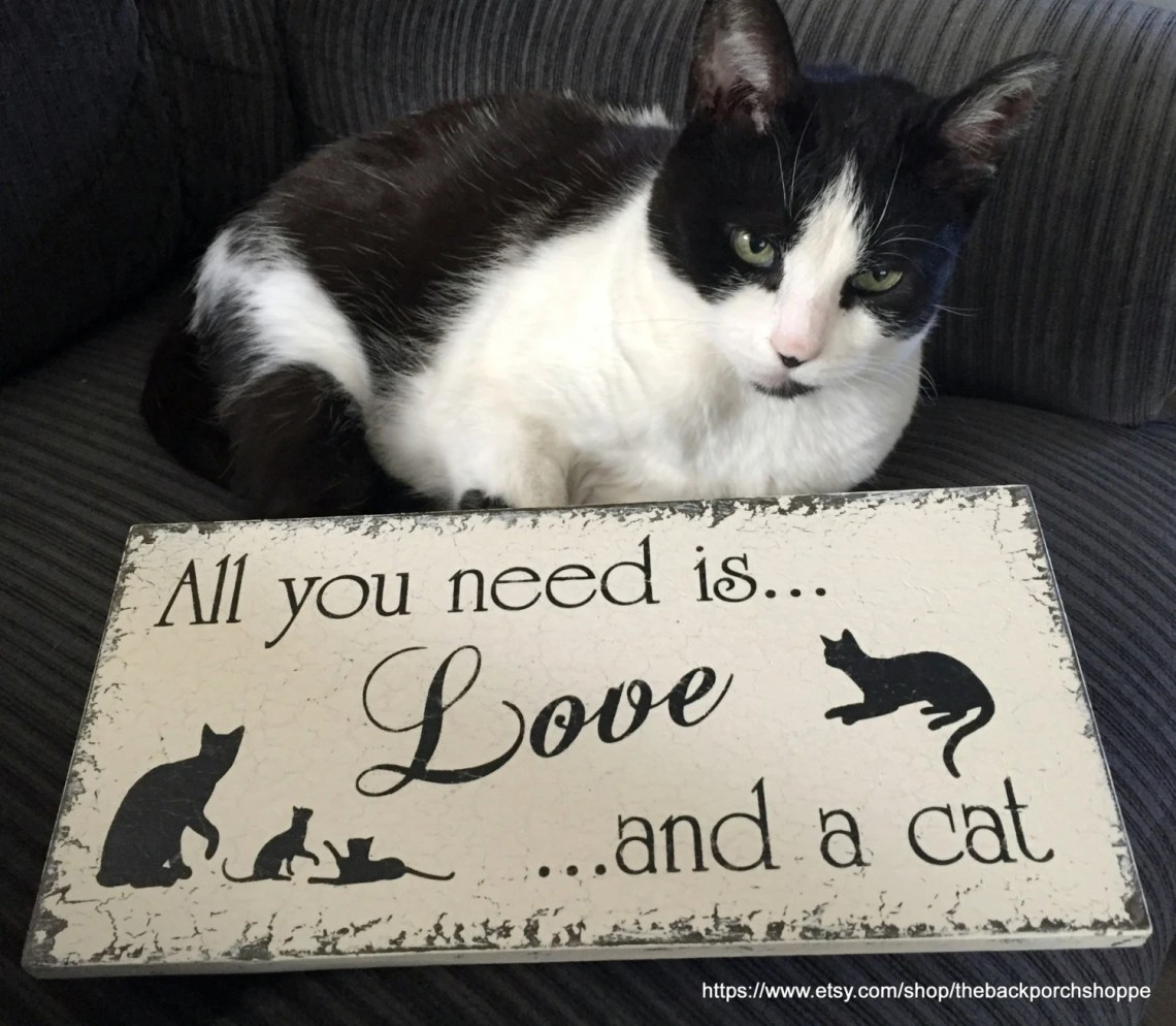 Download All you need is LOVE and a CAT Cat Signs Pet Signs All you