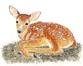 Fawn Print. Woodland Nurs...