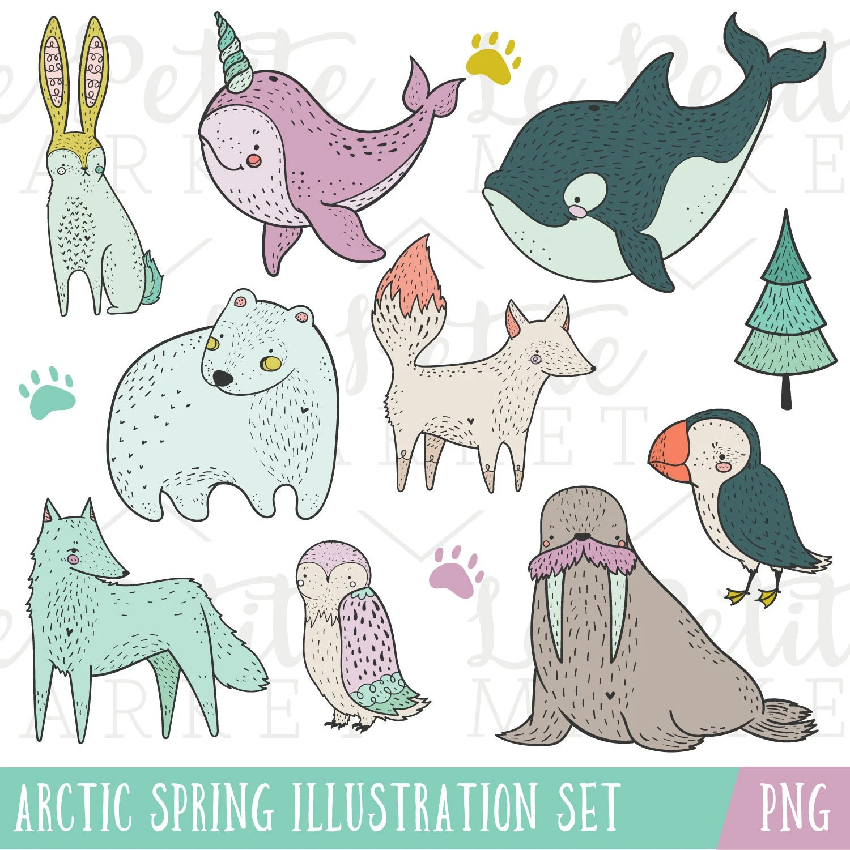 Arctic Animals Clip Art Set Narwhal Clip Art Polar Bear