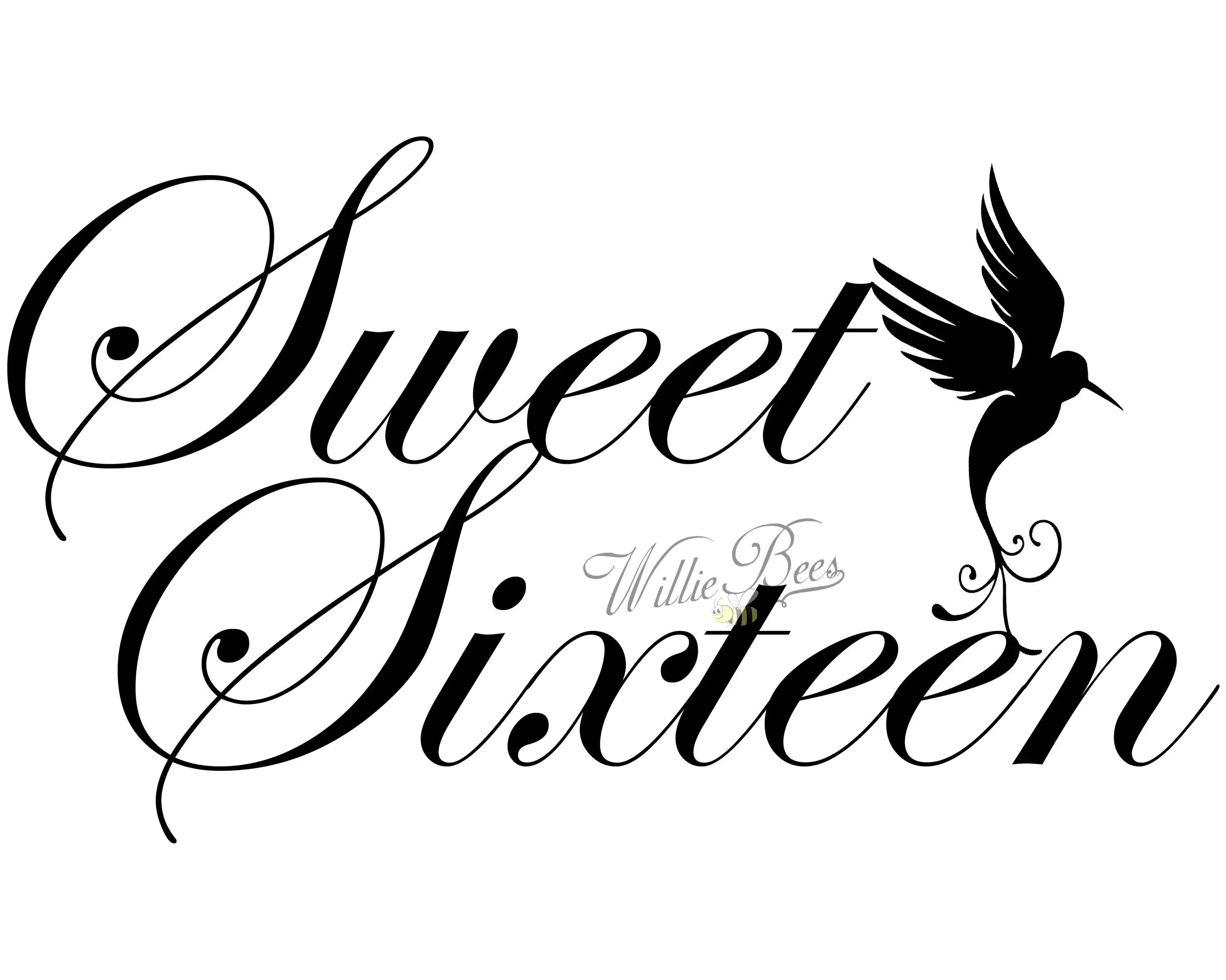 Sweet Sixteen 16 Birthday Silhouette Words T Shirt Quote