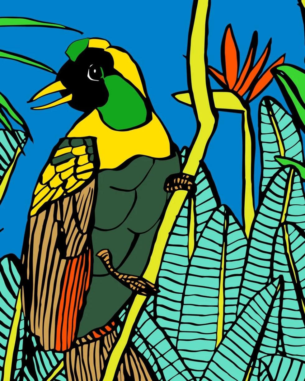 Bird of Paradise print. T...
