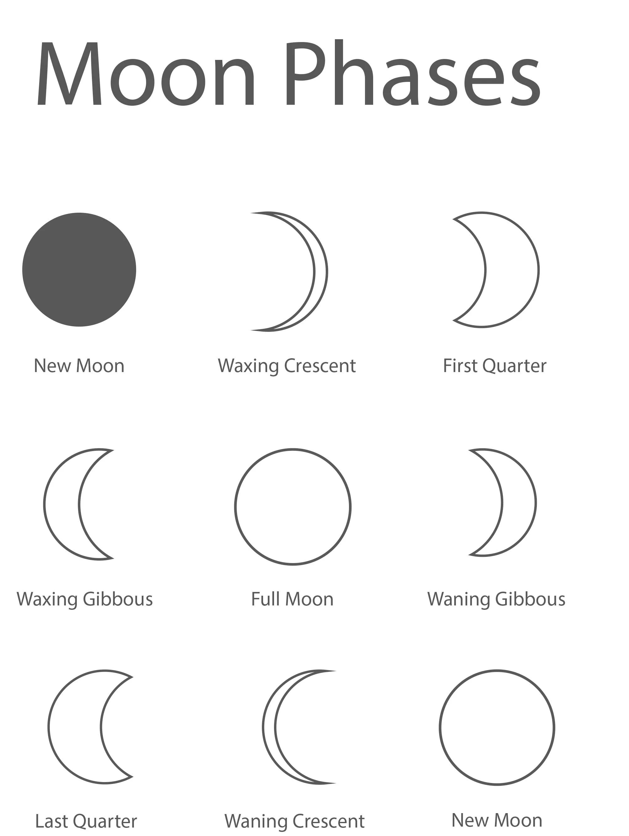 Moon Phases Coloring Sheets