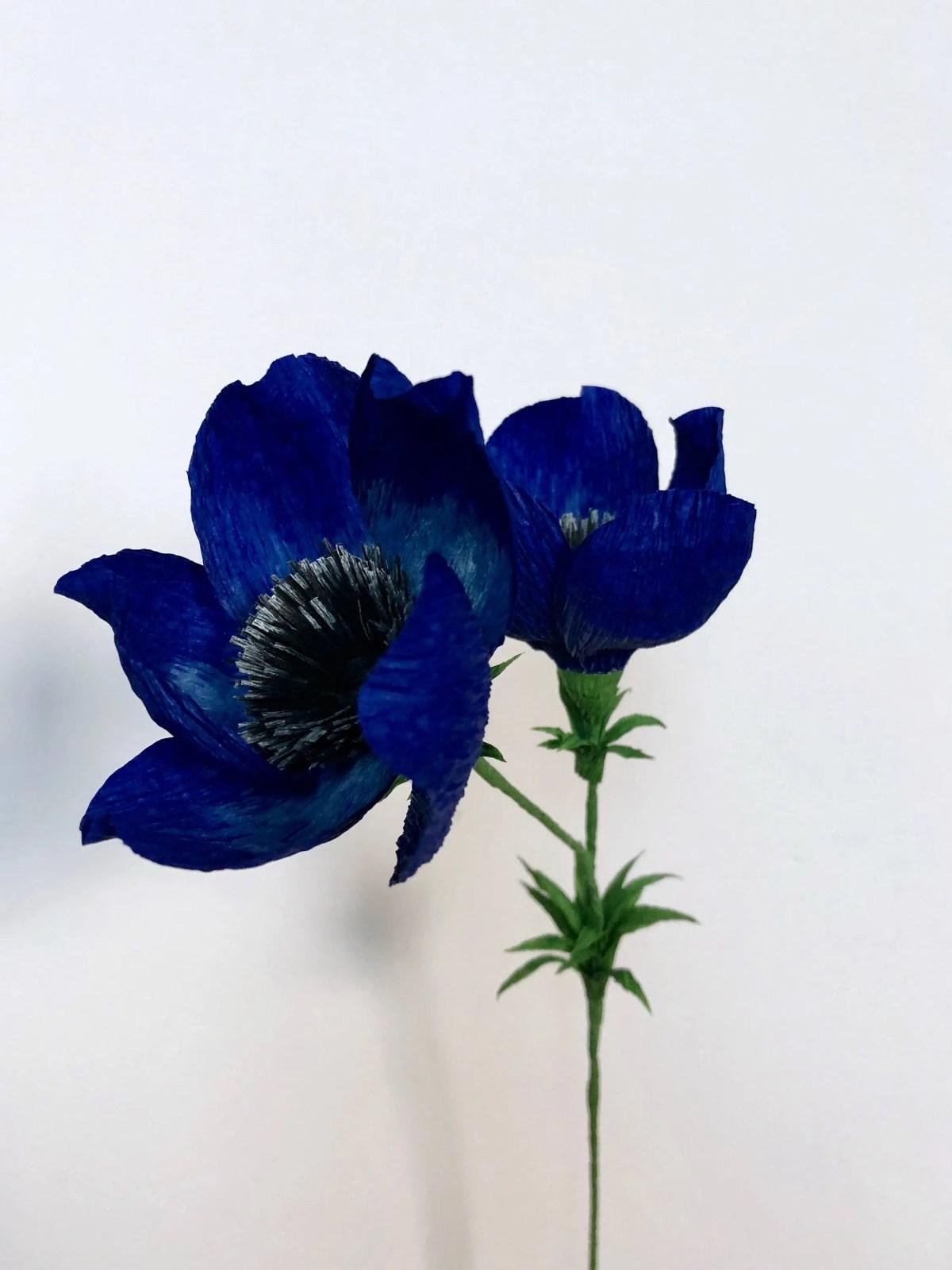 Blue Anemone Single Stem