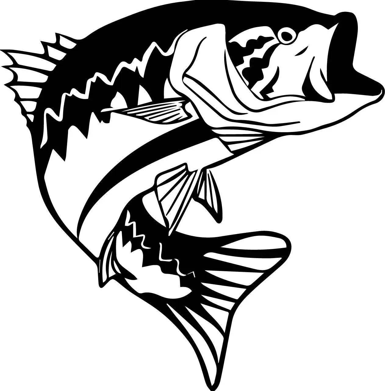 Fish Bass Sport Fishing Freshwater Seafood Ocean Hook