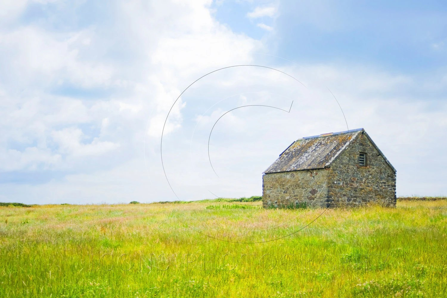 "Barn in a green field 30 x 40"" fine art canvas landscape, caldey island, wales"