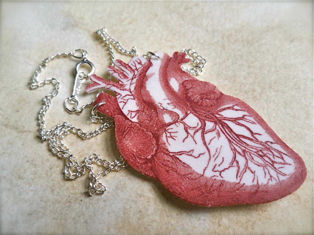 blood red anatomical human heart necklace