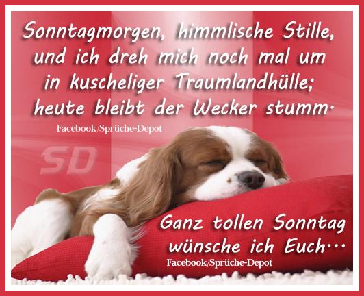 Pin Von Holger Auf Gute Nacht Gute Nacht Spruche Gute Nacht