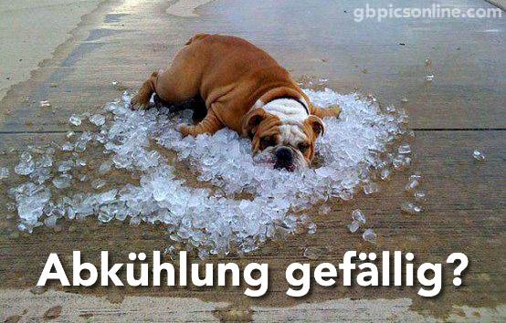 Sommerhitze Wunderbare Dinge Die Man Bei 30 Grad Tun Kann Welt