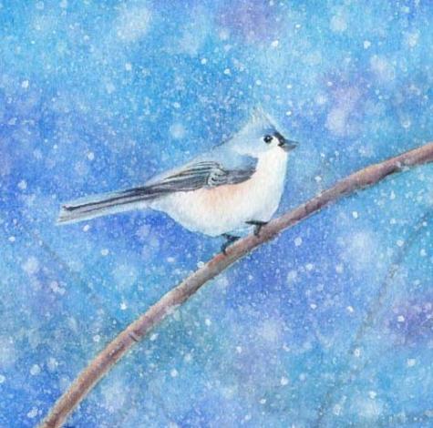 snowbird_watercolor_painting_1_a91fc737552e21b61f804fd53859c27d (475x470, 167Kb)
