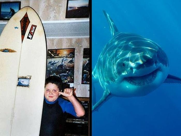 4 жуткие истории нападения акул, после которых не хочется заходить в воду