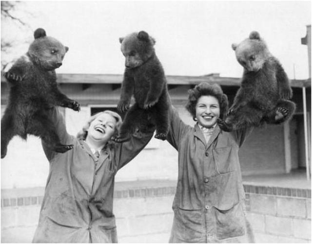 Как отдыхали сотрудники Освенцима и другие интересные исторические фотографии