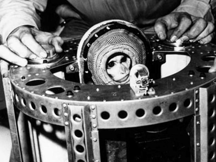 Почему США первой в космос запустили обезьяну