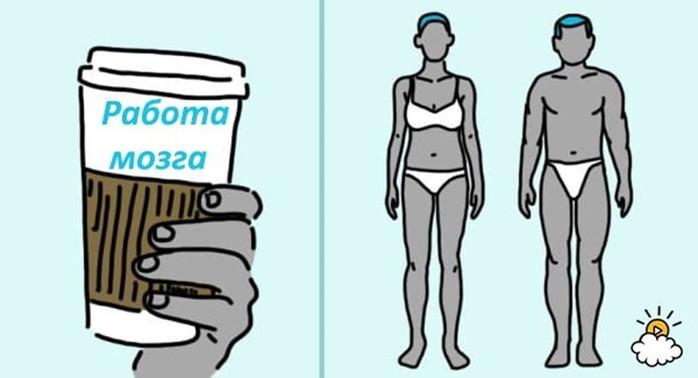 Я понятия не имела, что делают с моим телом всего 3 чашки кофе в день!