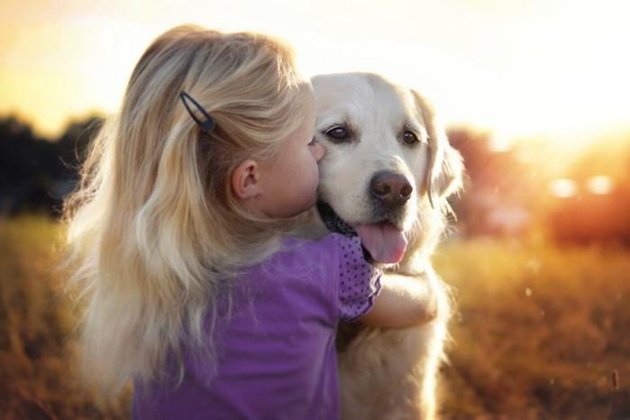 У кого еще дети просят собаку?