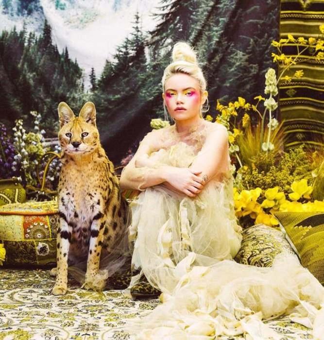 Животные, спасенные от браконьеров, в фотопроекте Наташи Уилсон