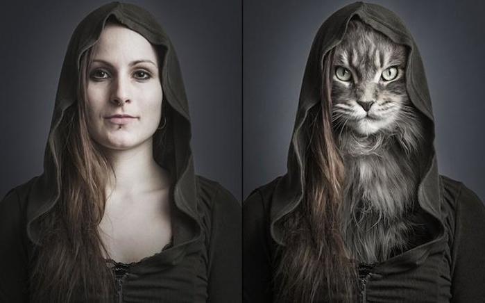 Почему животные становятся похожи на своих хозяев