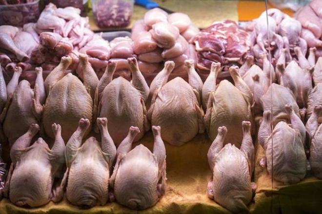 Куриное мясо в России оказалось опасным для жизни