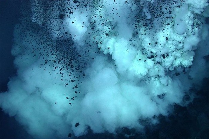 10 вещей, которые можно найти в Марианской впадине