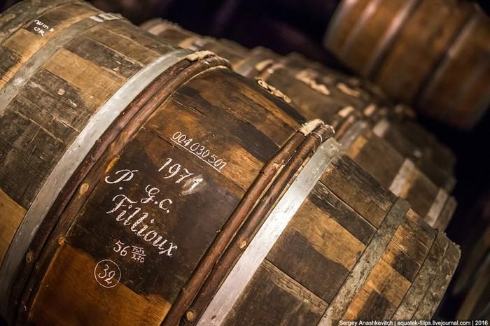 Путешествие в коньячный рай Hennessy